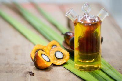 Olej palmowy VS rzepakowy. Co warto o nich wiedzieć?