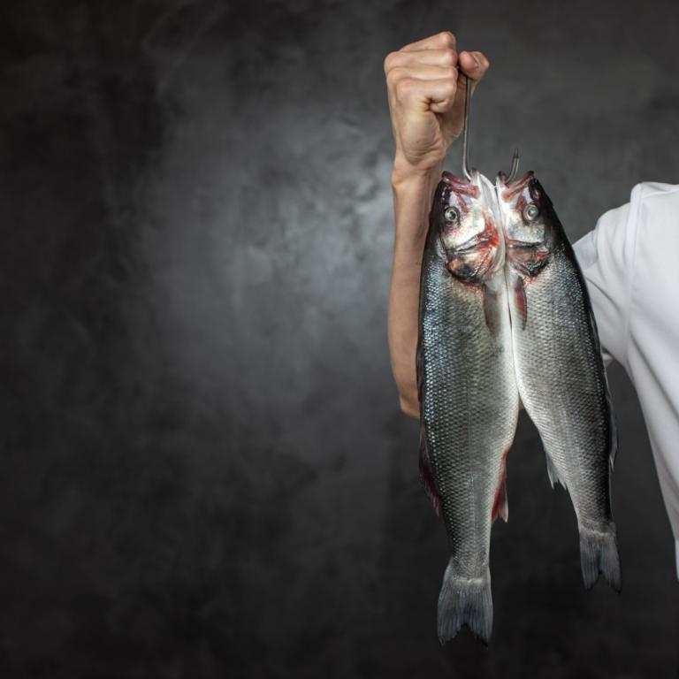 Najlepsze ryby do smażenia