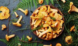 Jak serwować kurki w restauracji? 5 inspiracji na sezonowe menu!